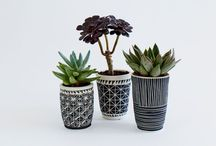 Pots / by María Abitia