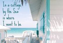 Beach Life / The wonder and beauty of life by the sea in a most charming city... Sarasota, Florida / by Leslie Brown