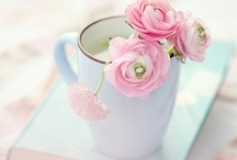Flowers in a Teacups