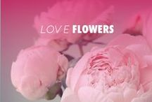WOMEN LOVE FLOWERS / by Anne Fontaine