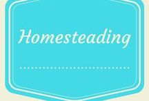 Homesteading / Miscellaneous homesteading skills and ideas
