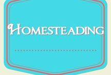 Homesteading / Miscellaneous homesteading skills and ideas