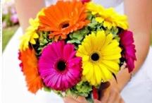 Wedding Ideas / Wedding dresses, creative wedding ideas, fun wedding ideas, unique wedding ideas, orange and pink wedding, wedding gifts.