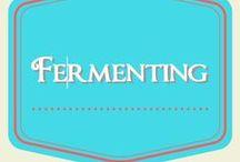 Fermenting / fermented food, fermenting