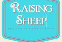 Raising Sheep / Raising sheep for meat and wool