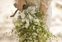 bouqet,flowers n tress / by Novita Sanjaya