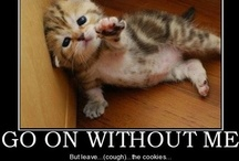 Ridiculously cute!