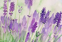 Smell the Lavender / by Cat