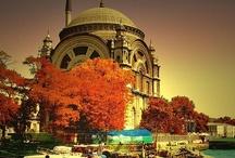 Turkish Delight / Welcome to Turkish Delight! www.bravenewchange.com