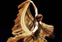 Flamenco / by franceseattle
