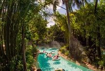 Disney Fun Outside the Parks / Disney Springs, Typhoon Lagoon, Blizzard Beach, and other activities to enjoy during your Disney Vacation