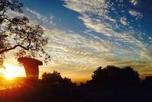 Sunsets / Beautiful Sunsets in Sonoma County - especially Paradise Ridge Winery!