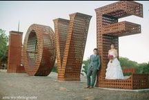 Weddings / Beautiful Weddings at Paradise Ridge Winery