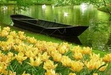Beautiful Places / by Cheryl Davis