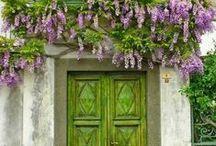 Entrez dans ma maison ... / First impressions! / by Suzanne