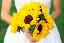 AxelBaum Wedding Inspiration