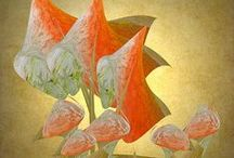 FAA..ARTIST/PHOTOGRAPHERS ETC / AWESOME ARTISTS..PHOTOGRAPHERS that are so lovely .. Sherri