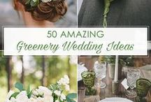 2016 Wedding Trends / Some ideas and inspiration for you event next year.