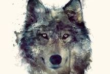 Tinder / Howl?!