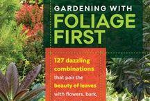 Focus on Foliage / Luscious leaves - who needs flowers?