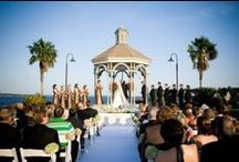 Houston's Top Wedding Vendors / Learn more about some of Houston's top wedding vendors