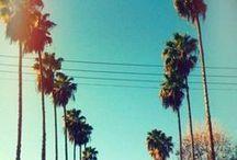Los Angeles / by SIX DEGREES LA