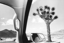 Lee Friedlander - America by car