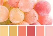 Color / These are some samples of color combination that I think are gorgeous. / by Jeri Kelly