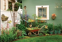 Gardening and Outdoors / by Renee W