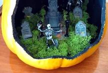 * Pumpkin Guts * / by Christopher Jones