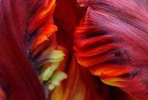 materiały tekstury kolory