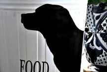 Cats & Dogs / Dog and Cat DIY Ideas and Recipes