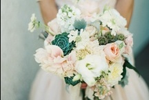 Mint and other shades of Green Ideas