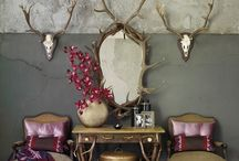 Horns in the House / Hint of nature in the home decor! Big Trend! / by Cynthia Crump