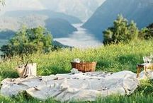 Every day is a Picnic day / by Sarah セーラ / Nomad's Land