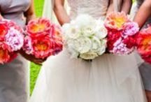 Il profumo della sposa / Sweetness of the bride | Bouquet