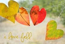 Fall/Halloween/Thanksgiving / by Kara Perkins