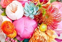 pretty flowers / by Erica Lorin