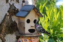 Birdhouses & Feeders / by Brenda Huntsinger