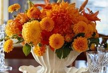 Floral Arrangements / by Brenda Huntsinger