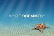 World Oceans Day / Happy World's Oceans Day!! Celebrate by sharing our beautiful and inspiring water photos!