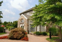 Treetops at Chester Hollow Apartments, Fitness, Tennis and Swimming