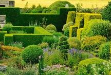 Garden / Pictures illustrating great gardens, good ideas and accessories for your garden as well as projects by designers #garden #gardening #GardenDesign