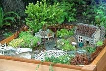 Fairy Gardens / by Kara Perkins