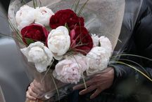 Luxurious bouquets to give