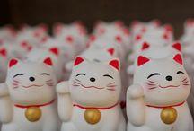 Japan <3 / by Miaa Rebane