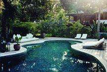 urban garden / backyard