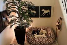Our furbabies room / Pet room ideas / by Summer LaForge Gardner