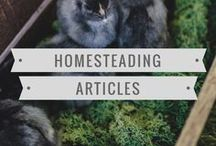 Homesteading / Articles about homesteading