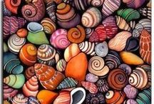 SEASHELLS / Nature's little jewels... / by Marketa